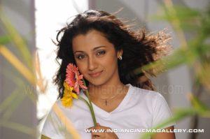Trisha Wedding Actress Trisha Krishnan To Marry Soon